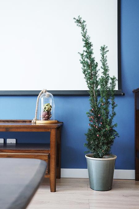 华容花园—要怎么拯救一个装残的房子